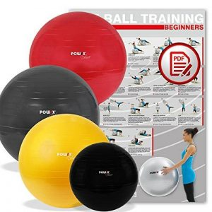 BALLON DE GYMNASTIQUE - Yoga, Pilates - Pompe comprise de la marque POWRX image 0 produit