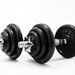 PROIRON Haltères - Ensemble d'haltères musculation réglable en fonte de 20 kg avec barre d'extension pour Entraînement musculaire et Haltérophilie de la marque PROIRON image 2 produit