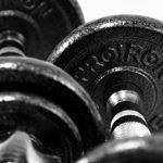 PROIRON Haltères - Ensemble d'haltères musculation réglable en fonte de 20 kg avec barre d'extension pour Entraînement musculaire et Haltérophilie de la marque PROIRON image 3 produit