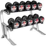 Rack de rangement pour haltères Gorilla Sports PRO de la marque Gorilla Sports image 1 produit